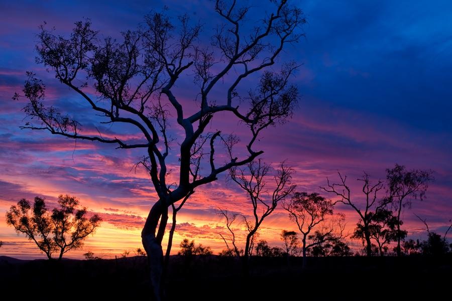 Eco Hill Sunset