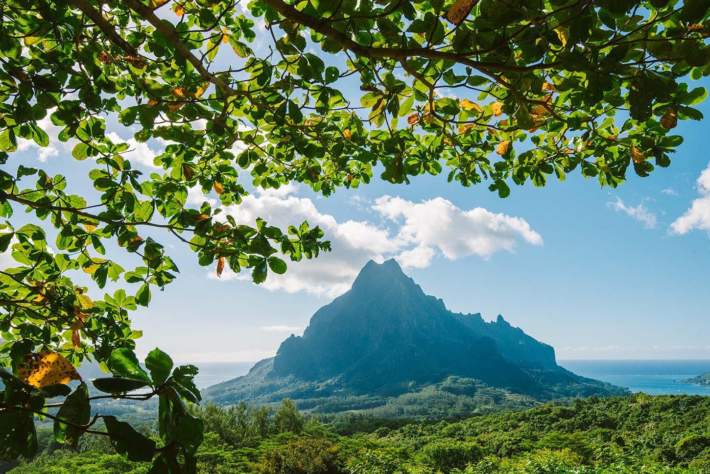 Belvedere est un passage obligatoire à Moorea et Tahiti