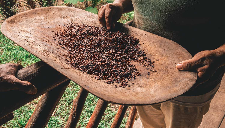 La réserve amérindienne Bribri pour voir la confection du chocolat au Costa Rica