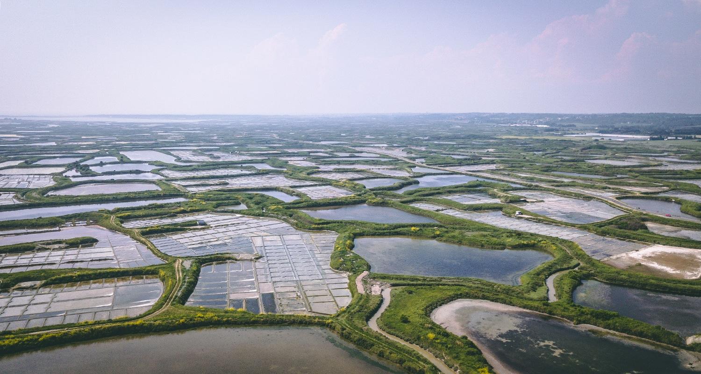 Les marais salants de guerande en Loire Atlantique