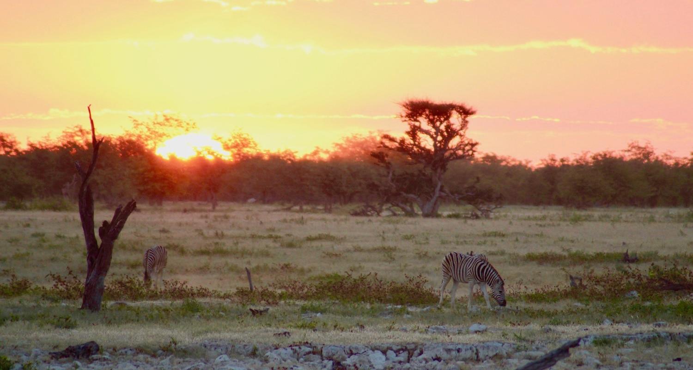 Coucher de soleil Etosha Namibie