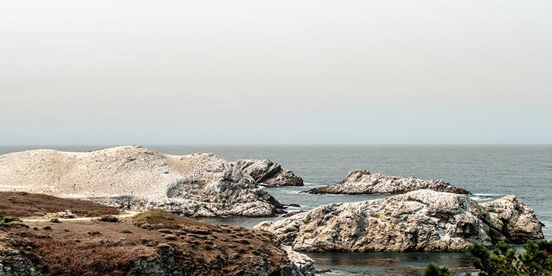 Point Lobos réserve naturelle